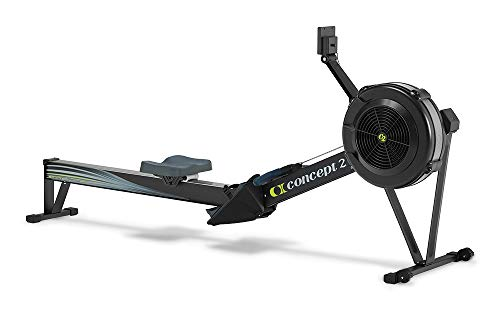 Read more customer reviews about the Concept 2 rower here