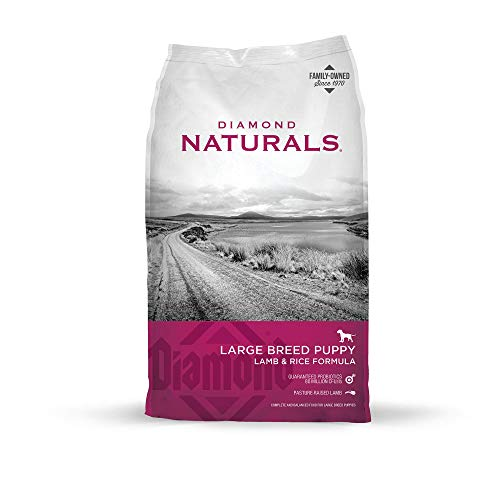 Diamond Naturals Large Breed Dry Puppy Food Real Lamb and Rice with Protein, Probiotics, Superfoods, Antioxidants and Other Premium Ingredients to Support Health in Growing Puppies 20lb