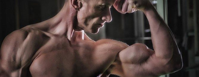 best bicep body weight exercise