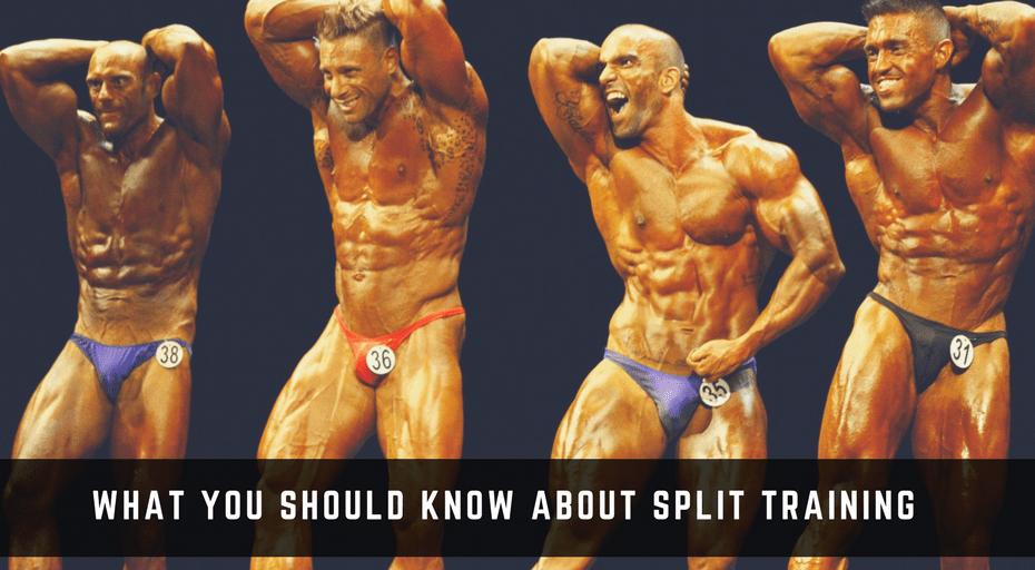 split training bodybuilding