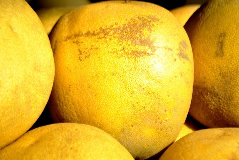 grapefruit diet review