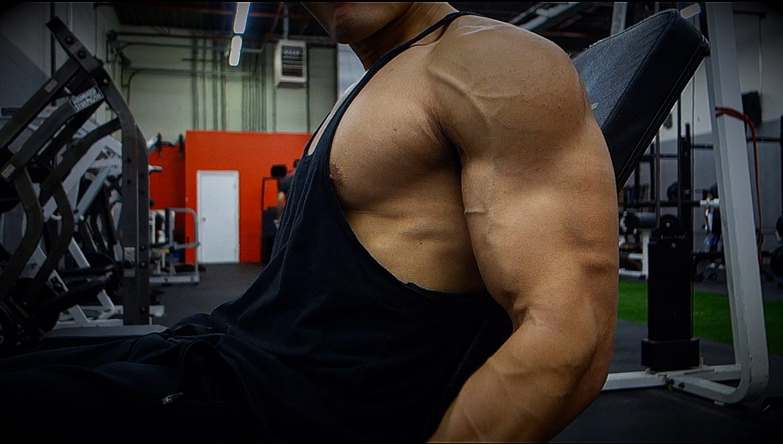 biceps dumbbell exercises