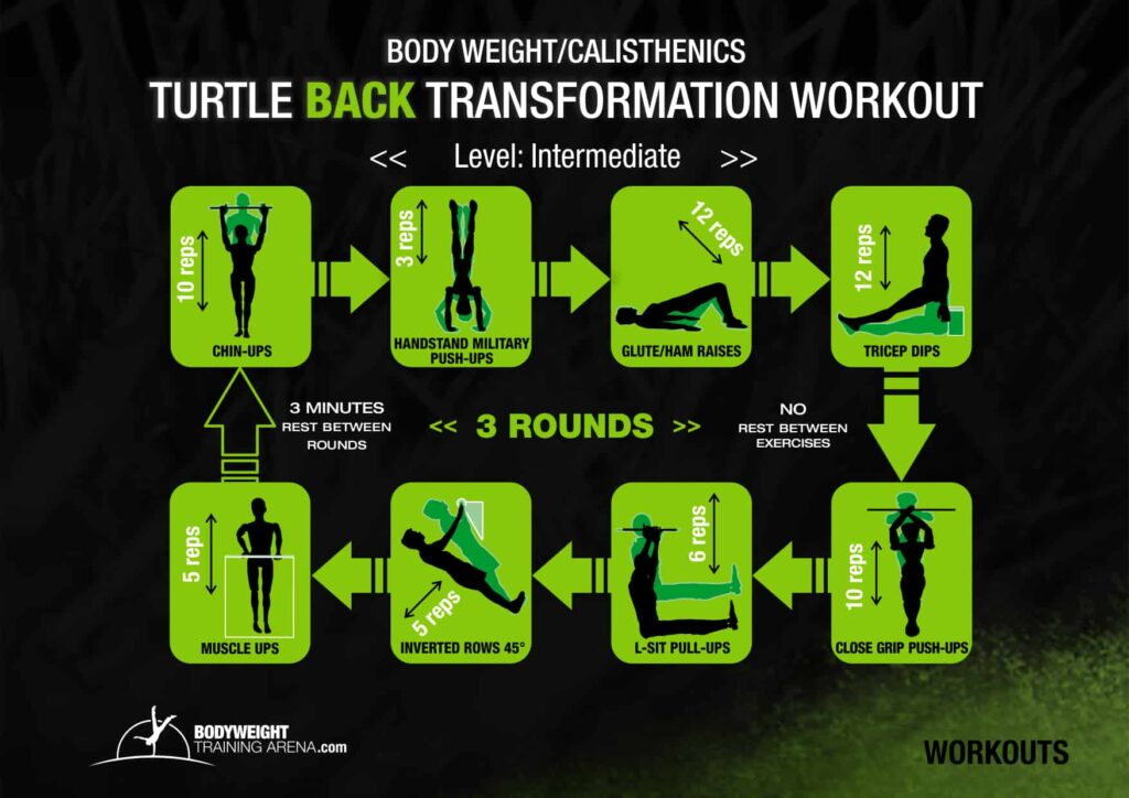back transformation workout