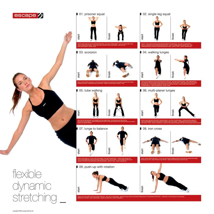 benefits of dynamic stretching