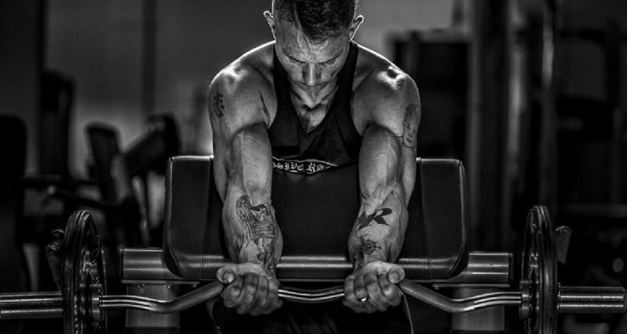 biceps exercises for beginners