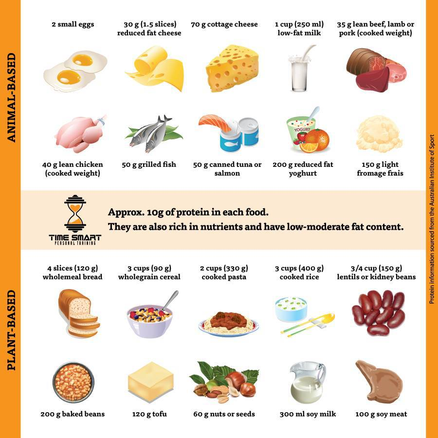 protein-foods-to-increase-metabolism