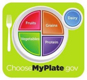 5 Basic Food Groups