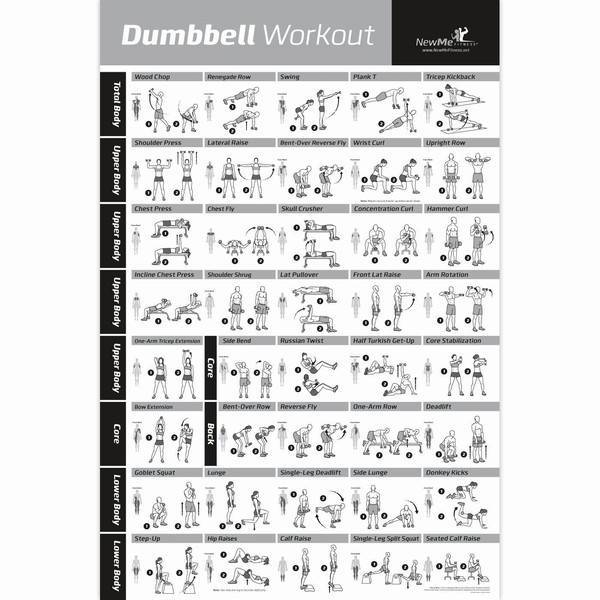 huge collection dumbbell exercises to train your entire body at home ...