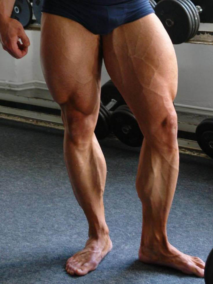 What Are the Best Leg Exercises for Mass and Strength