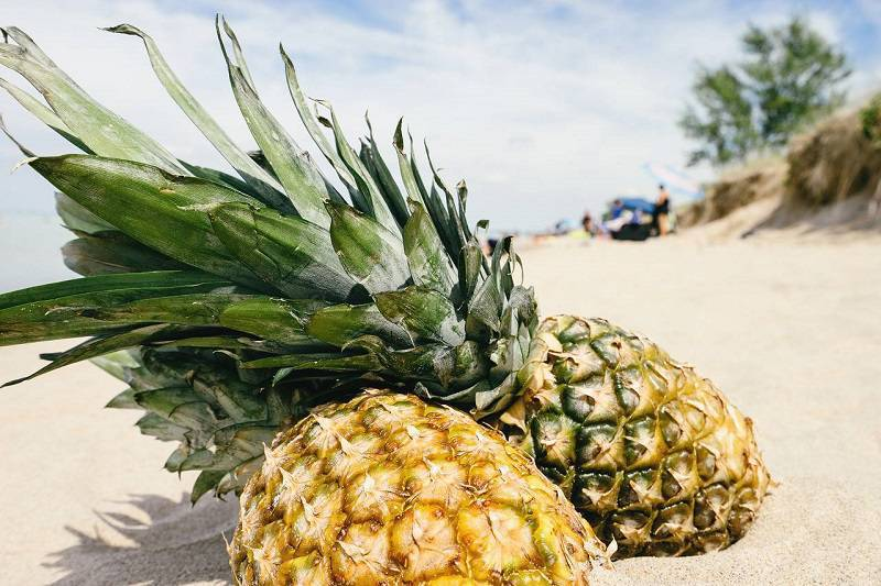 pineapple-diet-weight-loss