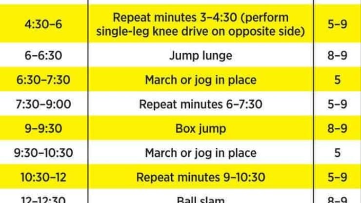 plyometric circuit
