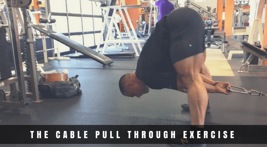 cable pull through exercise guide