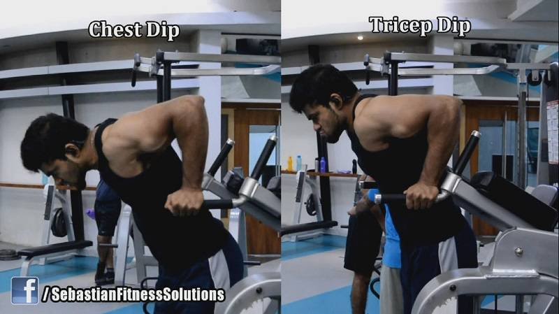 chest dips vs tricep dips