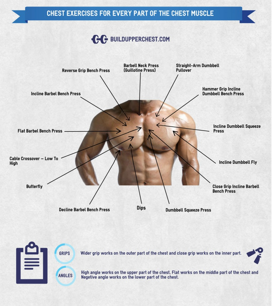 Exercises to Target the Different Parts of the Chest