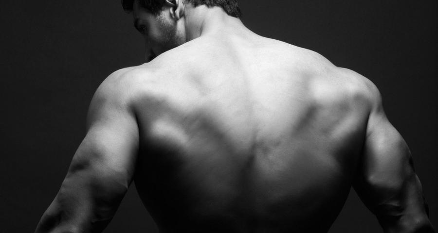 back exercise machine